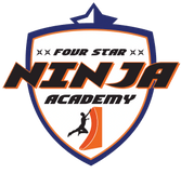 Four star Ninja academy