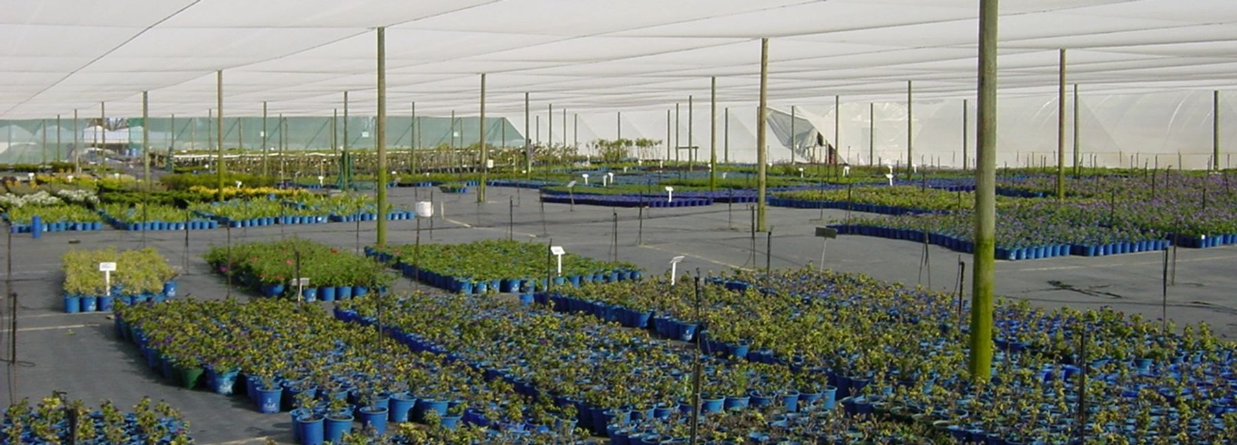 Agricultural and Farming shade solution
