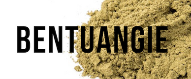 Organic Kratom - Bentuangie Front Page Link Title Image for the Home page of OrganicKratom.us