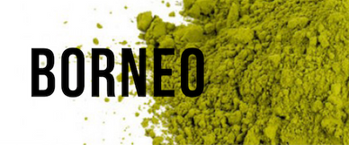 Organic Kratom - Borneo Front Page Link Title Image for the Home page of OrganicKratom.us