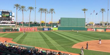 spring training arizona cactus league major league baseball phoenix valley sun musical instrument