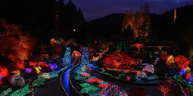 holiday christmas lights victoria tour vancouver island butchart garden canada BC british columbia