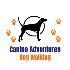 Canine Adventures Dog Walking