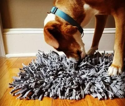 Dog and snuffle mat image