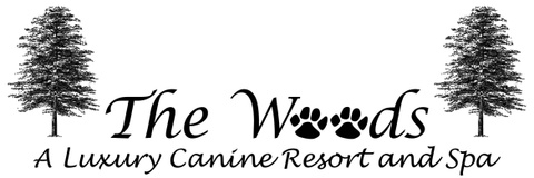 The Woods A Luxury Canine Resort and Spa