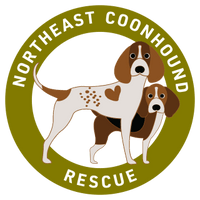 Northeast Coonhound Rescue