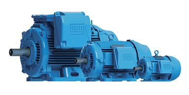 Electric motors, gear motors, variable frequency drives, controls, automation and generators