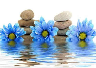 Blue flowers and stacked stones reflecting over water