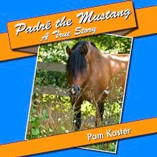 Padre' the Mustang