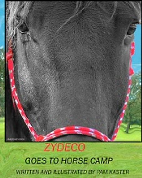 Zydeco Goes To Horse Camp Cover Art