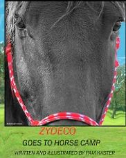 Zydeco Goes To Horse Camp