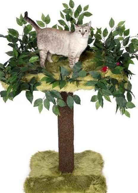 Fairy Landing Scratching Post and Bed all in one