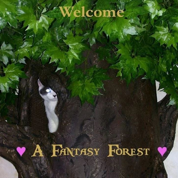 Large Fantasy Forest Cat Trees