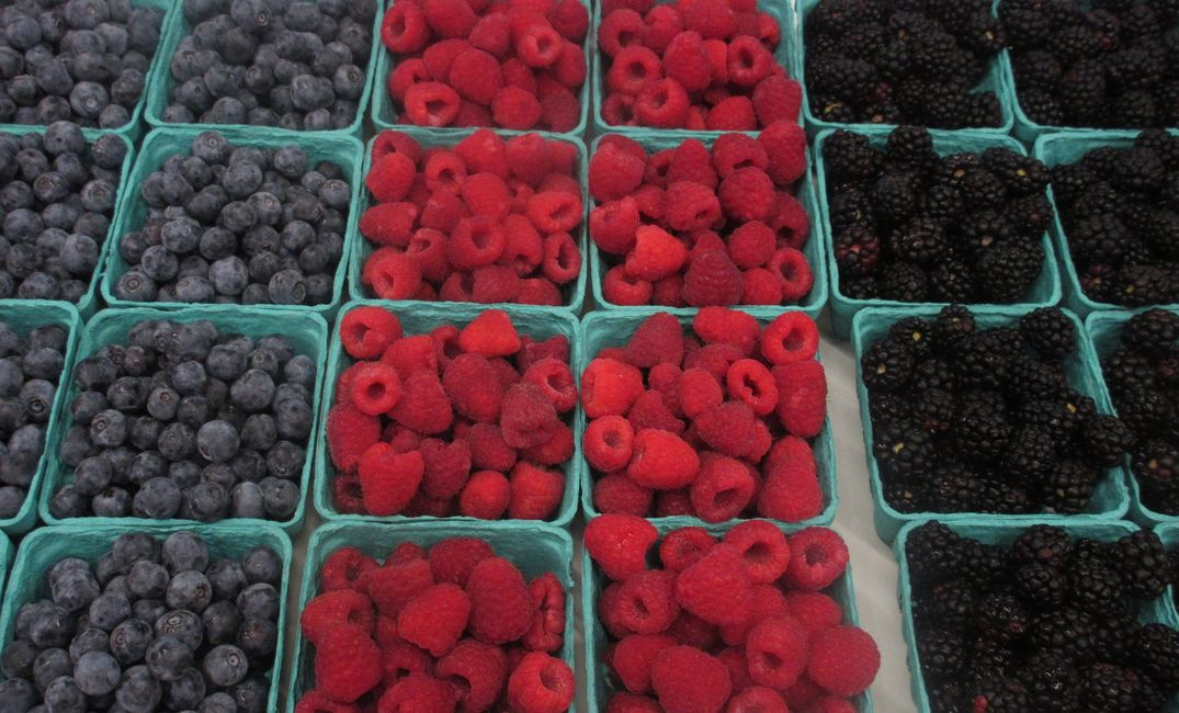 Fresh Fruit, Raspberries, Blackberries, Blueberries, Strawberries, Homegrown, Organic Yoders Produce