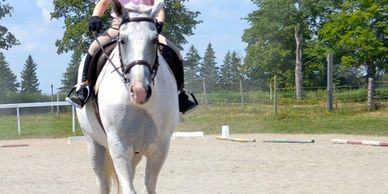 Horses for lease in Canada