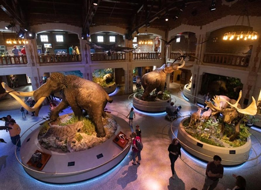 The ProMedica Museum of Natural History at The Toledo Zoo & Aquarium Winner of 2019 Build Ohio Award