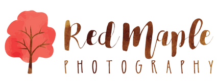 Red Maple Photography