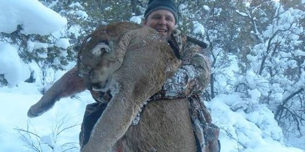 Lion Hunt with Hounds Northern New Mexico Tom Cat Mountain Lion