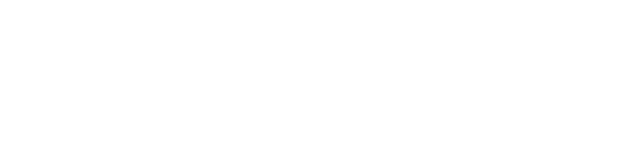 SILVERCHIP FOX CONSULTING