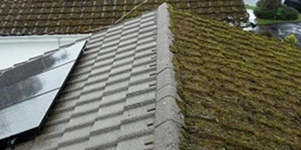 Moss removal re-moss roof cleaning