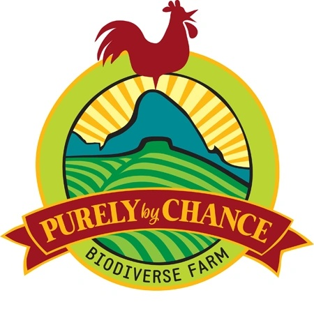 Purely By Chance Farm