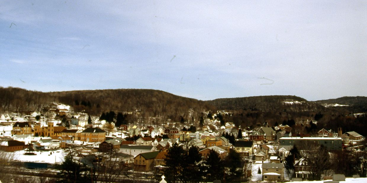 A View of the Community of Lilly from Saint Bridig's Cemetery