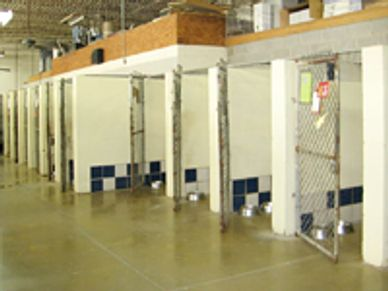 HELP the Animals Kennels