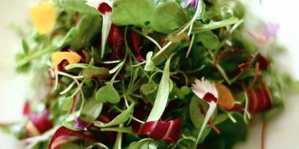 GRAND PRAIRIE MICROGREENS means Freshness!
