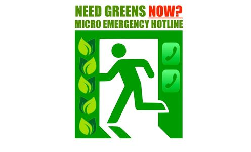 Got A Microgreens Emergency? GRAND PRAIRIE MICROGREENS offers after hours services to save you in a pinch.