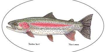 Wholesale Jeff Currier Fish Decal Information