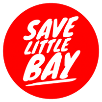 Save Little Bay