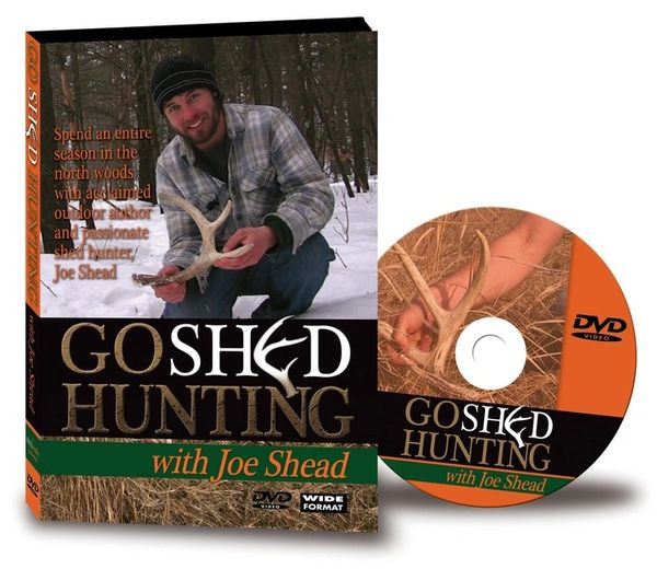 finding deer sheds, Joe Shead, shed or shead, deer shed hunting, shed antler hunting, shed hunter