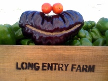 Long Entry Farm