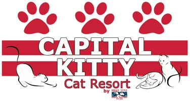 Capital Kitty Cat Resort