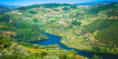 Douro River valley Terraced vineyards wine country Portugal
