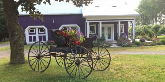 antique carriage in front of our Carriage House Lavender Boutique