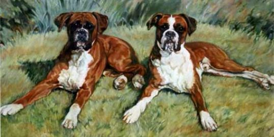 "Best of Friends  Oils 20"" x 30"""