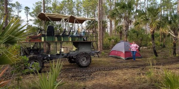 Camping in the Big Cypress   big cypress, everglades, camping, over night tours, sight seeing tours
