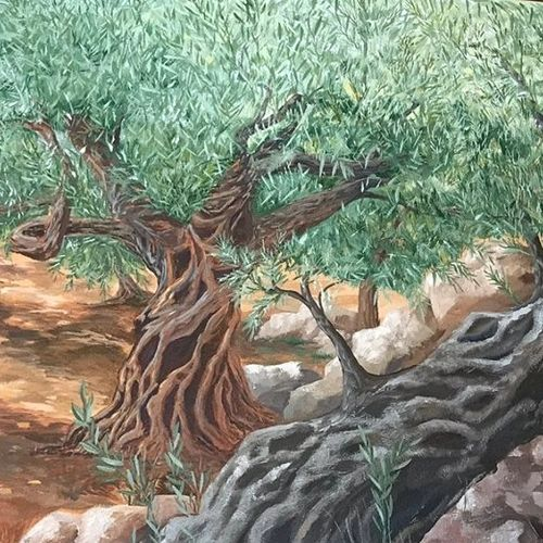 Jill Roberts Mural of olive orchard painted at Mar Saba Olive Oil in Temecula, California.