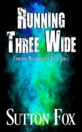 Running Three Wide  Cameron Motorsports Book Three  Drive hard. Turn left. Slide into love …