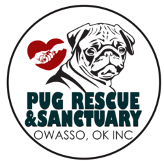 Pug Rescue & Sanctuary