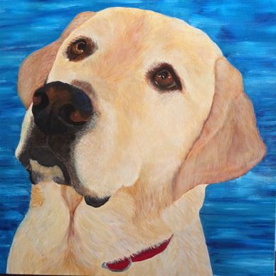 """ WOW! Toby's portrait arrived and I LOVE IT! The ocean background turned out beautiful ...you are s"