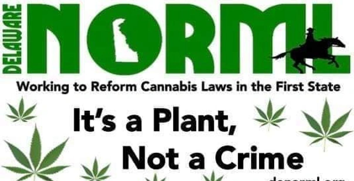 Its a plant Not a crime.