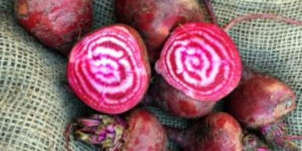 red beets on burlap, one beet sliced open to show red and white stripe inside