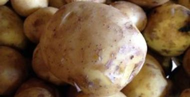 closeup of potatoes, columba type