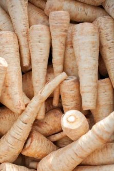 photo of parsnips closeup