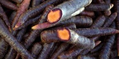 closeup of purple carrots, one cut open to show orange inside with purple rim just under the skin