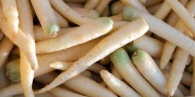 closeup of white carrots without tops