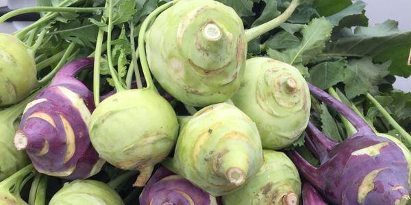 bunch of green and purple kohlrabi with tops still on