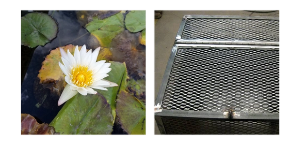 Trust Koi Lagoon for your pond supply and metal fabrication needs.